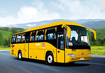 Higer School Bus KLQ6119TA